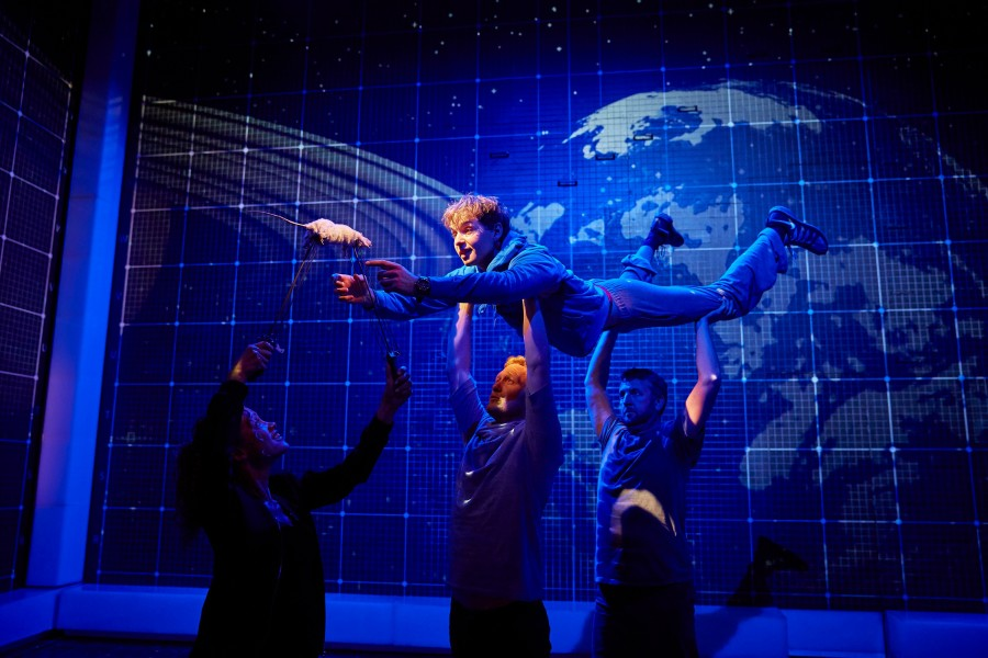 The curious incident of the dog in the night time critical essay