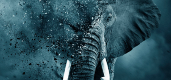 Heartbreaking New Trailer For Leonardo DiCaprio's The Ivory Game Has Arrived